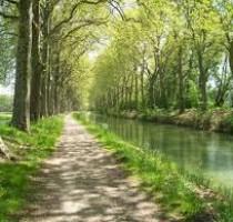 Canal du Midi - Marche