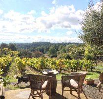 wine tour carcassonne
