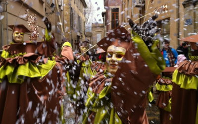 wine and carnival Limoux