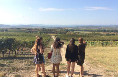Tour de vin