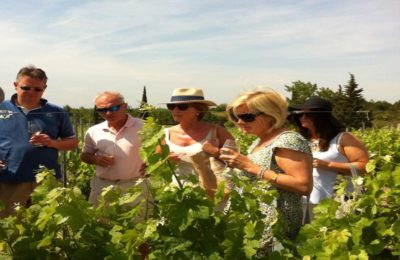 visite de vignobles et dégustation de vins